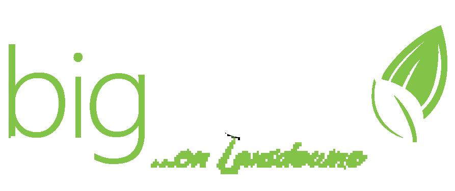 BigTrees